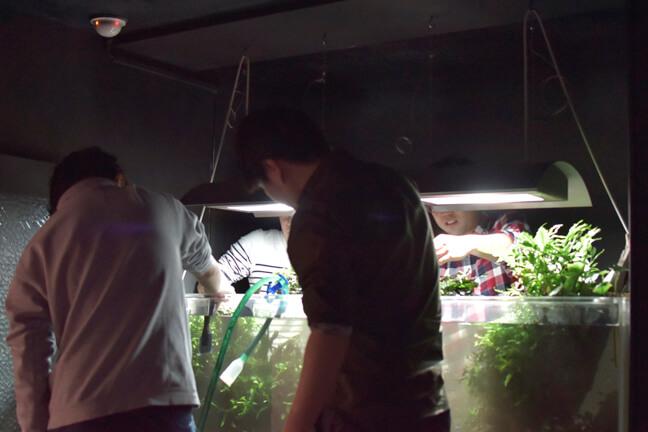 水槽の掃除を4人の男性社員